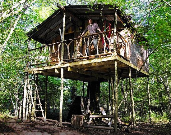 nick weston treehouse