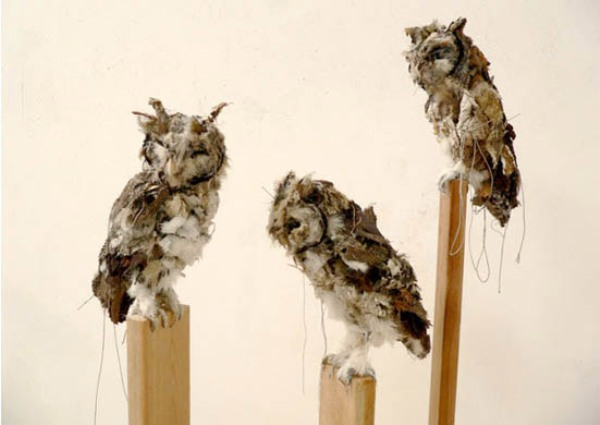 owls made by Kathryn Spence