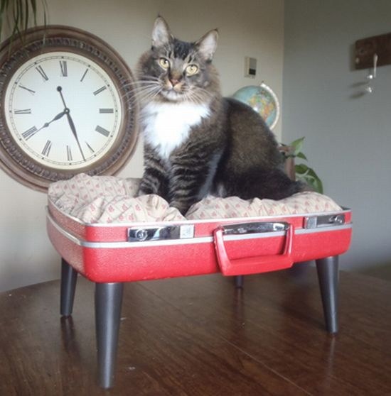 pet beds made from reclaimed materials 5