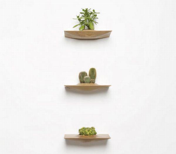 Plant Pods by Domenic Fiorello 5