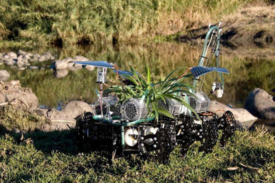 plantas nomadas robot plant 1