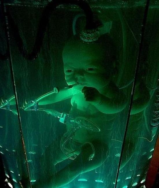 scifi artificial womb sculpture7