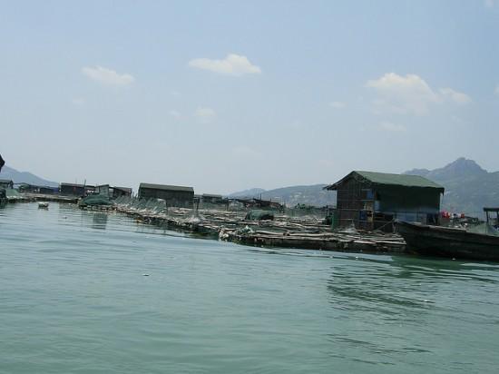 self sustaining floating village 4