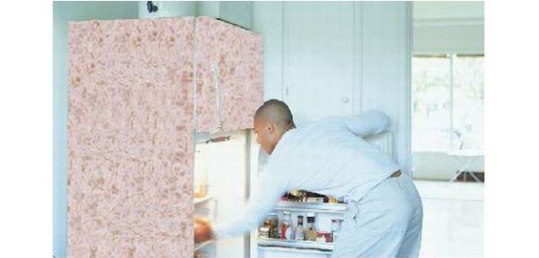 Shag carpet for your fridge