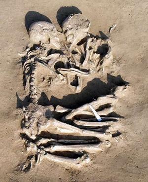 skeleton 1822