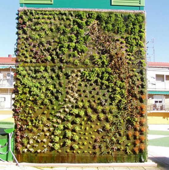 spain cubical vertical garden 3