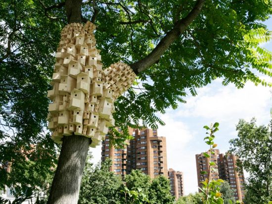 spontaneous city in the tree of heaven 3