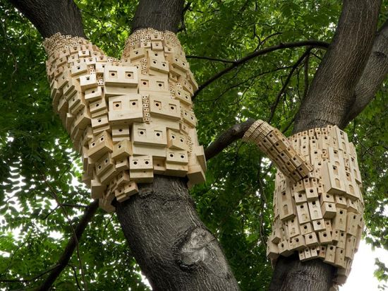 spontaneous city in the tree of heaven 4