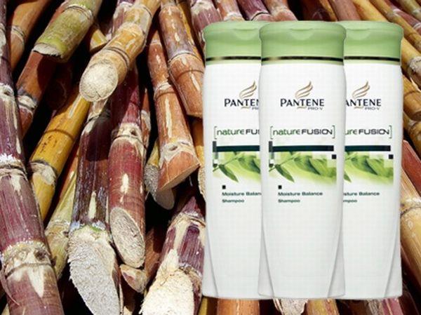 Sugarcane Plastic