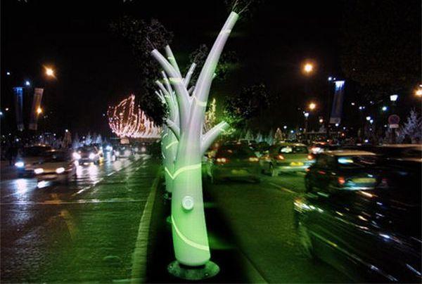 The Light Tree