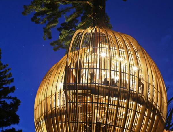 treehouse ed01