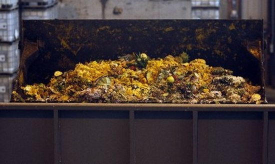 waste food fertilizer1