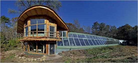 whole tree house2