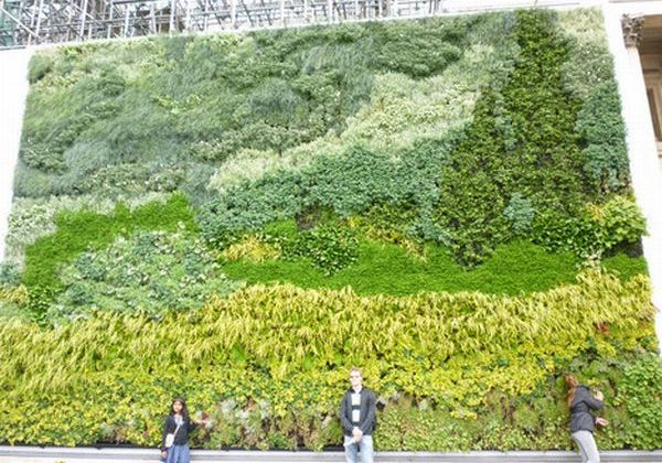 World's First Living Wall Painting 1