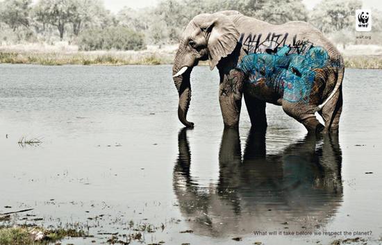 wwf graffiti elephant