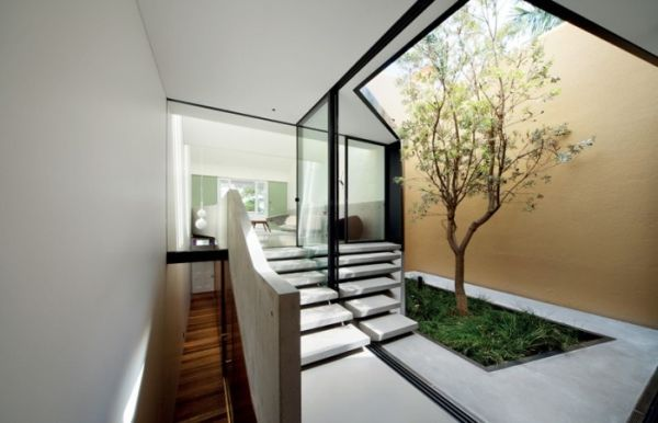 Living-space-with-an-interesting-use-of-skylights-and-indoor-green
