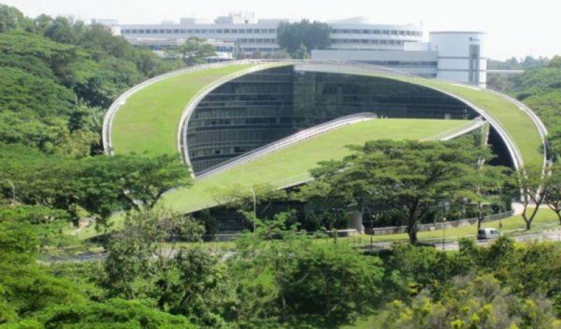verdant-green-eco-buildings-using-plants-nanyang-technological-university