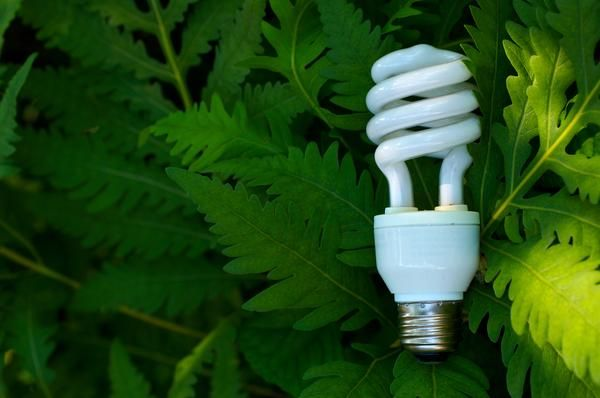 energy-saving-cfl-light-bulb