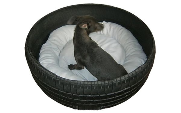 Recycled Old tire as bed for pet