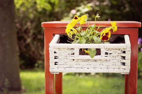 old furniture planter