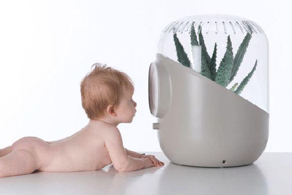 Andera plant-based air purifier