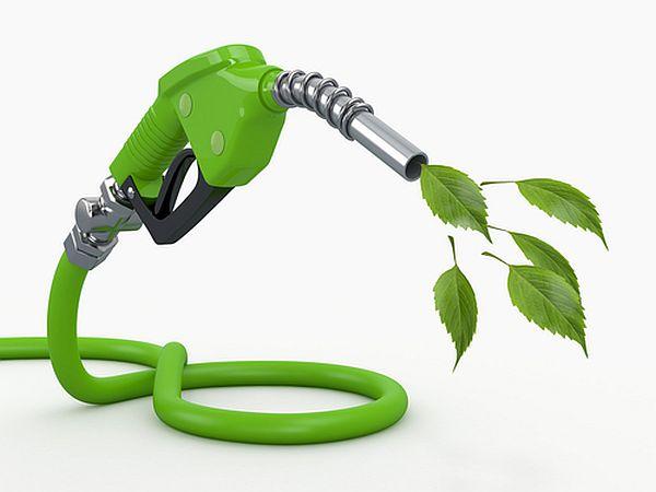 Biofuels Help Us Get Rid of Oil