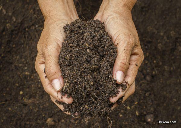 composting like a boss (1)