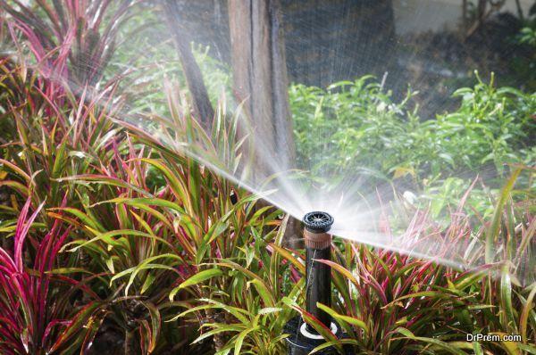 closeup of water springer