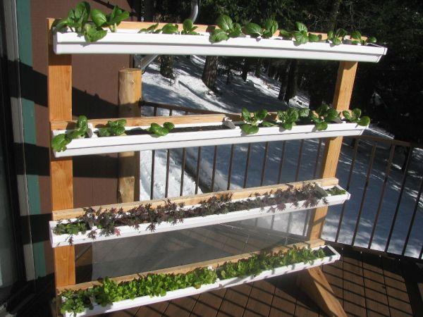 Vertical gutter gardens