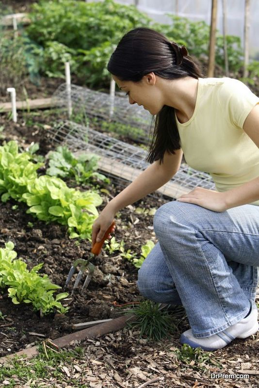 women-in-agriculture-1