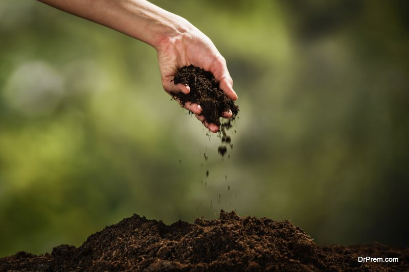 Use compost to fertilize the lawn