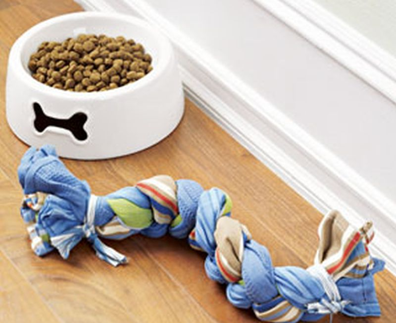 2-in-1 Toy & Treat