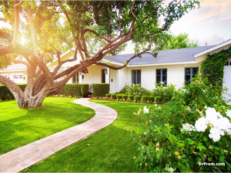Landscape your back and front yards