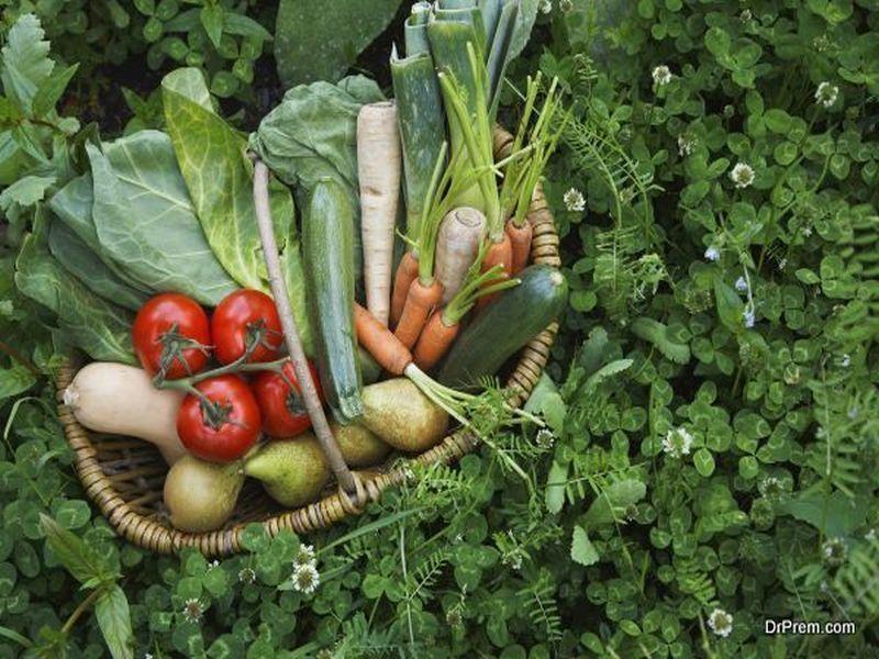 buying-organic-food &quot;width =&quot; 800 &quot;height =&quot; 600 &quot;srcset =&quot; https://i2.wp.com/greendiary.com/wp- contenuto / upload / 2017/12 / buying-organic-food-2.jpg? w = 800 &amp; ssl = 1 800w, https://i2.wp.com/greendiary.com/wp-content/uploads/2017/12/buying -organic-food-2.jpg? resize = 216% 2C162 &amp; ssl = 1 216w, https://i2.wp.com/greendiary.com/wp-content/uploads/2017/12/buying-organic-food-2. jpg? resize = 300% 2C225 &amp; ssl = 1 300w, https://i2.wp.com/greendiary.com/wp-content/uploads/2017/12/buying-organic-food-2.jpg?resize=768%2C576&amp;ssl = 1 768w, https://i2.wp.com/greendiary.com/wp-content/uploads/2017/12/buying-organic-food-2.jpg?resize=585%2C439&amp;ssl=1 585w &quot;sizes =&quot; (larghezza massima: 800px) 100vw, 800px &quot;data-recalc-dims =&quot; 1 &quot;/&gt; </p> <p> Alcuni dei migliori tipi di alimenti biologici che puoi acquistare sono prodotti di provenienza locale. Ci sono innumerevoli vantaggi nell&#39;acquistare prodotti biologici locali alimenti, alcuni dei quali sono: </p> <p><!-- Quick Adsense WordPress Plugin: http://quickadsense.com/ --></p> <p> I cibi coltivati localmente sono spesso più dolci e nutrienti. è perché vengono portati sul mercato immediatamente dopo la raccolta o la raccolta e quindi sono freschi. </p> <p> Non devono essere ritirati presto per tenere conto dei lunghi tempi di spedizione e di transito. </p> <p> Anche i prodotti locali sono rispettosi dell&#39;ambiente. Questo perché non hanno bisogno di essere trasportati su lunghe distanze e, come bonus, il loro acquisto promuove gli agricoltori locali. <strong> </strong></p> <p> <strong> Vendite e coupon </strong><strong> <img data-attachment-id=