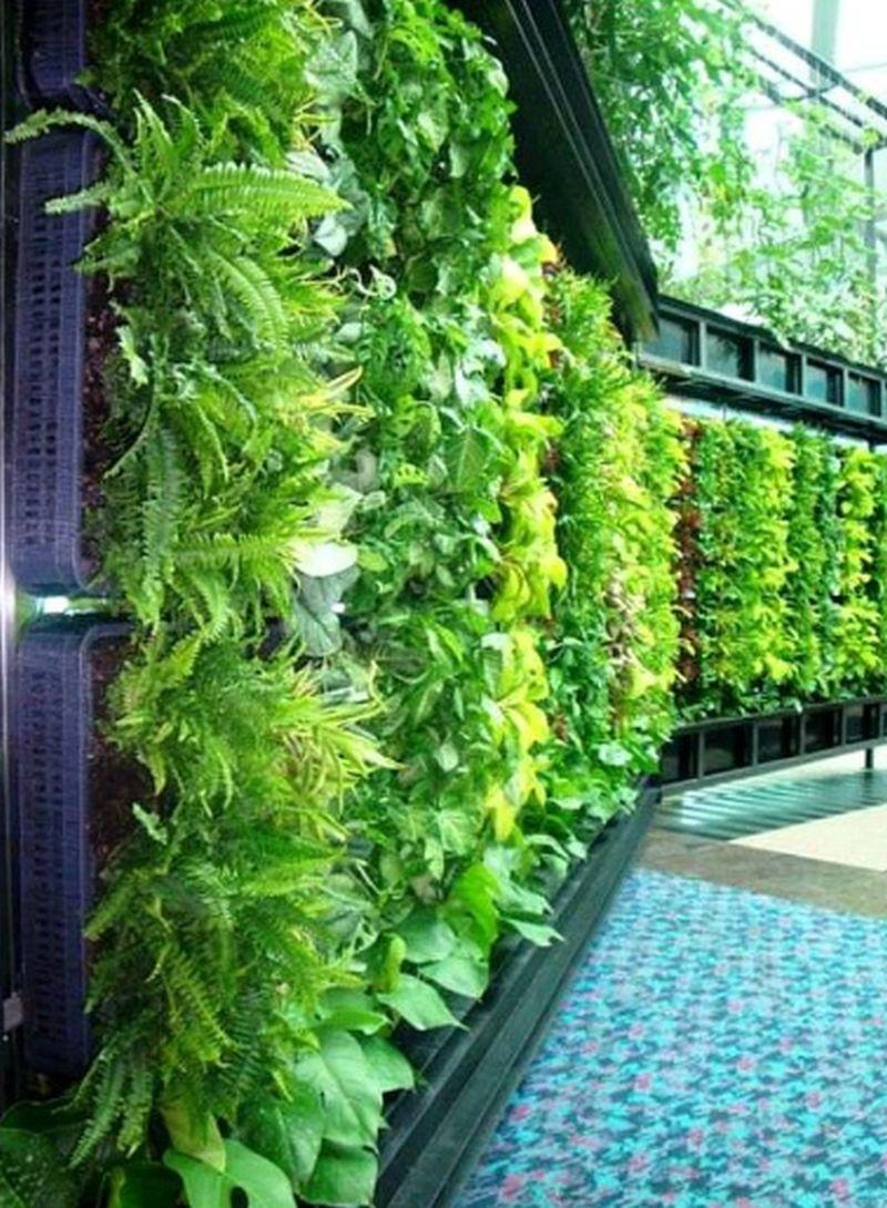 living planters