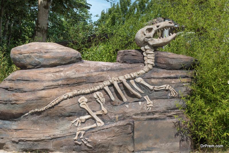 human-role-in-megafauna-extinction