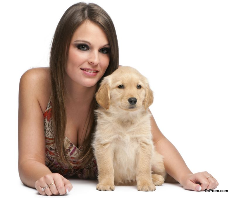 Helichyrsum oil for puppies