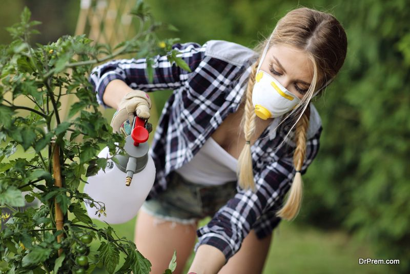 Keeping-Pests-Away-From-Your-Yard-Organically-