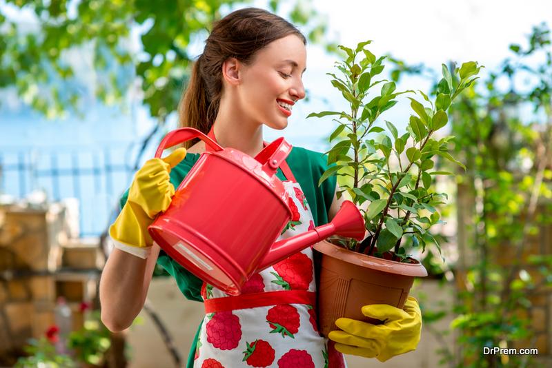 Select Native Plants