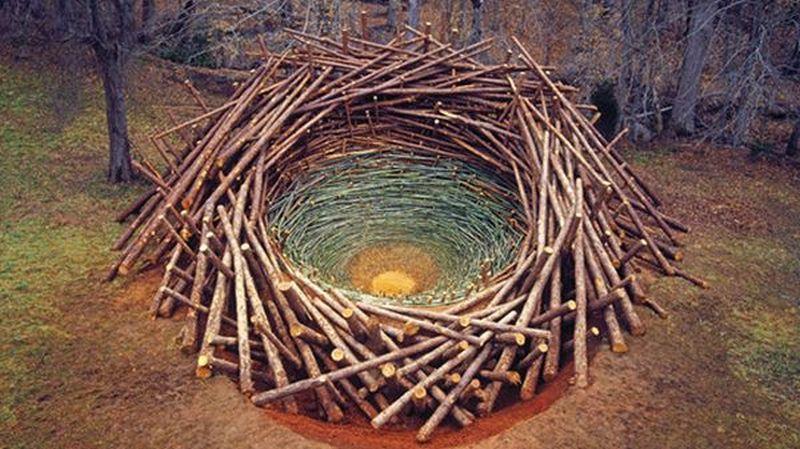 """The """"Clemson Clay Nest"""