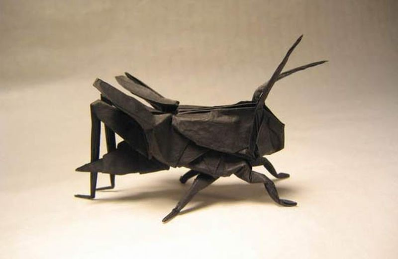 Insect art by Brian Chan