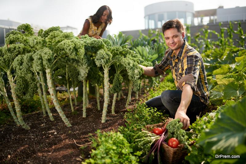 Sustainable Farming Practice