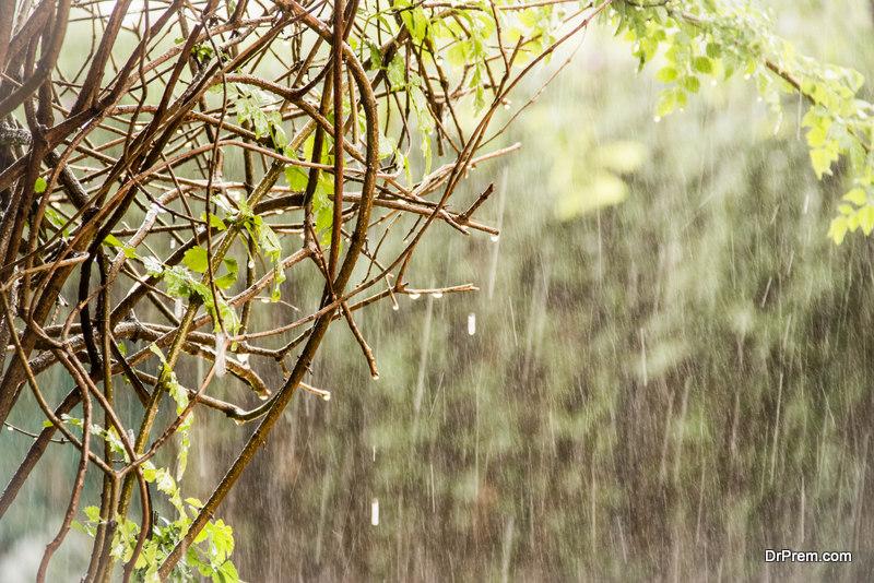 Weak-Monsoons
