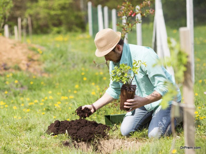 Reasons To Start Gardening