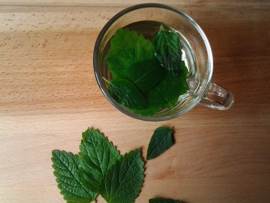 Thee met citroenmelisse en munt