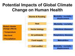 climatechangeimpacts
