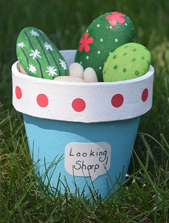 Rockin the Cactus