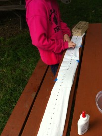 After planting seed tape in the garden, we learned we can do this ourselves, and is much more cost effective.