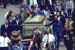 a-turner-leading-mule-at-mlk-funeral