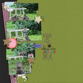 Alli Hugart_greeneEdition_SeptemberStars_Temp01_LeatherStars_adhtom(2)